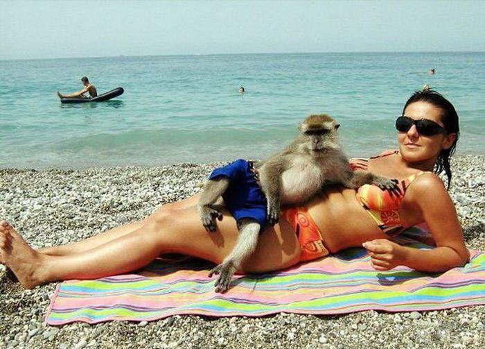 Убойные приколы с пляжей всего мира, 30 фото