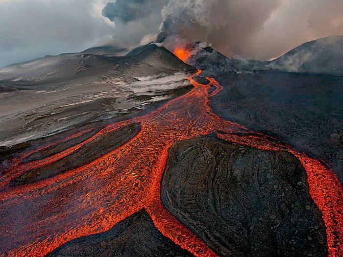 Удивительные фото живой природы Земли